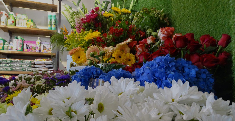 Lavorazione di fiori freschi e composizioni per ogni occasione